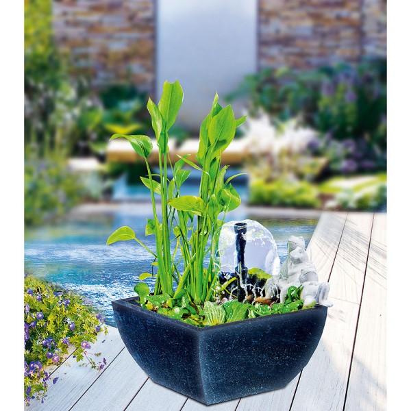 Heissner Wassergarten Set schwarz mit sitzender Froschfigur